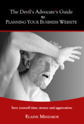 The Devil's Advocate's Guide to Planning Your Business Website