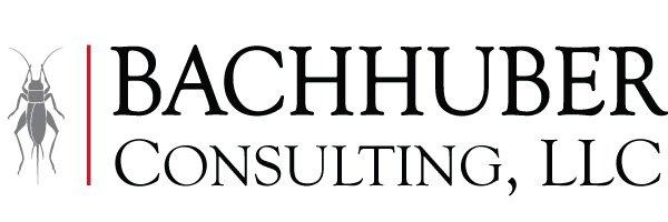 bachhuber consulting llc